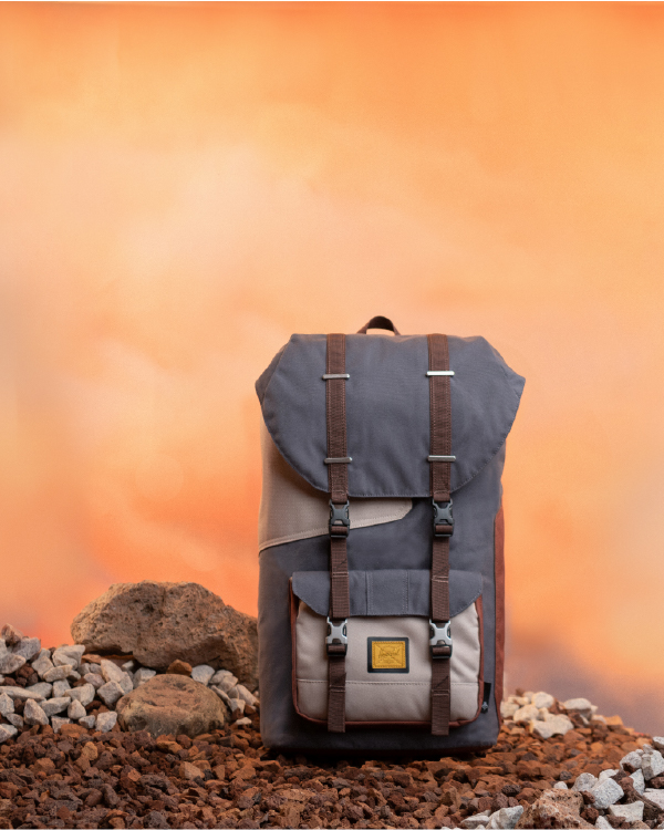 A Mandalorian Herschel Little America Backpack on an alien desert planet
